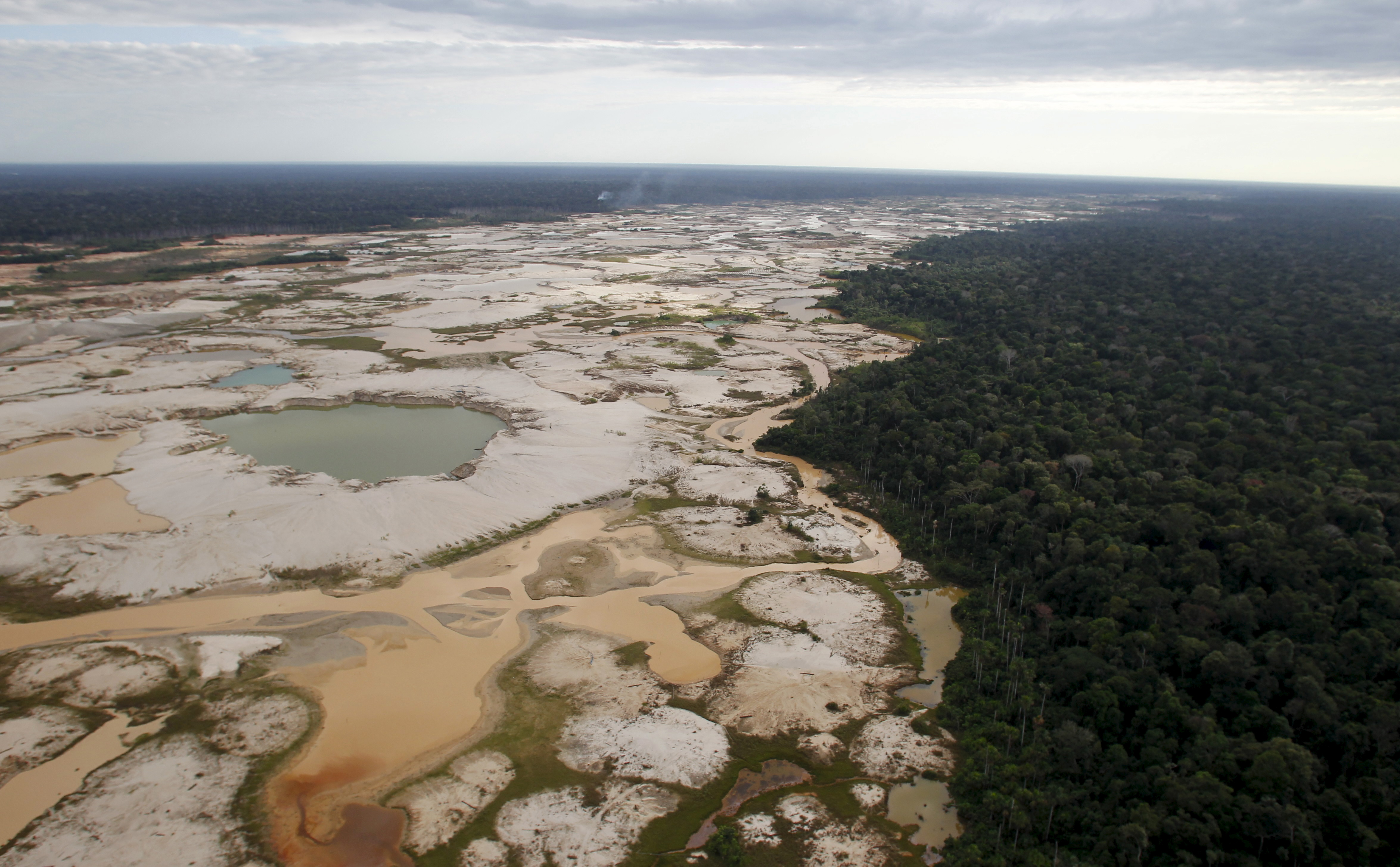 Illegal deforestation in the Amazon Rainforest